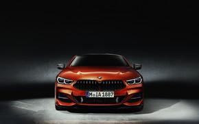 Картинка оранжевый, фон, купе, BMW, вид спереди, Coupe, 2018, 8-Series, 8er, G15