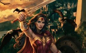 Картинка взгляд, птицы, меч, герой, костюм, Wonder Woman, Чудо женщина