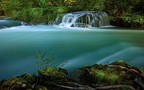 Картинка лето, трава, вода, ветки, природа, река, берег, растительность, течение, листва, водопад, поток, зеленая, водоем