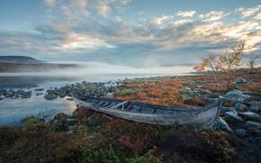 Картинка туман, река, берег, лодка