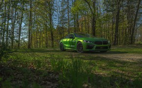 Картинка трава, купе, BMW, Coupe, 2020, BMW M8, двухдверное, M8, M8 Competition Coupe, M8 Coupe, F92