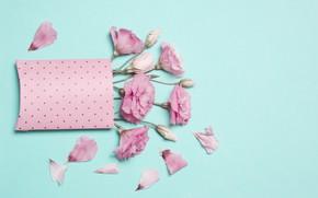 Картинка розовый, букет, голубой фон, эустома