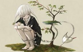Картинка Девушка, фэнтези, хвост, yuu-rin