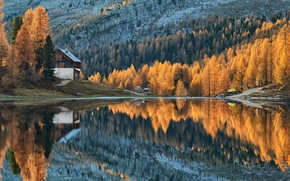 Картинка forest, trees, autumn, lake, cabin