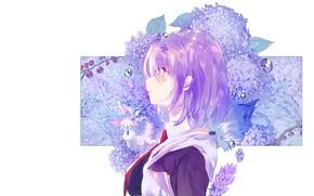 Картинка девушка, цветы, гортензия