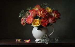 Картинка фон, розы, букет, лепестки, кувшин, гипсофила