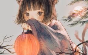 Картинка девочка, фонарь, ушки