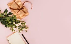Картинка цветы, фон, розовый, розы, букет, подарки, декор, roses, Present