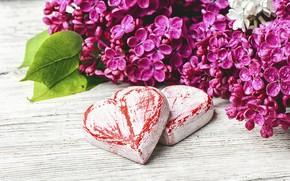 Картинка цветы, сердце, love, heart, wood, flowers, сирень, romantic, spring, lilac