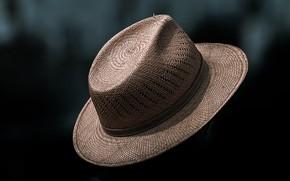 Картинка фон, шляпа, соломенная шляпа