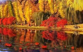 Картинка пейзаж, природа, парк, отдых, арт, прогулка, Nina Vels, Feofania Park autumn in old Kiev