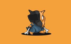 Картинка кость, Покемон, Pokemon