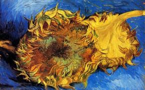 Картинка подсолнух, Винсент ван Гог, vincent87, Two Cut Sunflowers 3