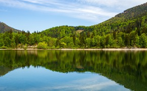 Картинка лес, вода, деревья, горы, природа, озеро