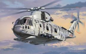 Обои AgustaWestland, AW101, Merlin, Противолодочный вертолёт, European Helicopter Industries, Королевский ВМФ, EH101, Sting Ray torpedo