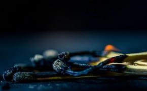 Картинка макро, огонь, спички