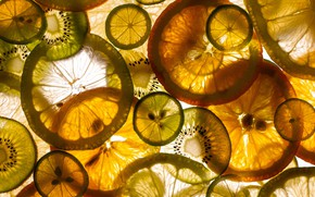 Картинка апельсины, кружочки, цитрусы, дольки, ассорти