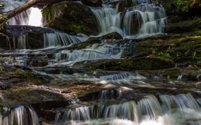 Обои поток, лес, Virginia Hawkins Falls, речка, камни