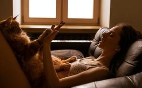 Картинка кошка, кот, девушка, лапки, руки, мейн-кун, ладушки, Nu Панда, Алина Грачёва