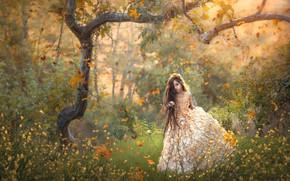 Картинка осень, цветы, дерево, платье, девочка, длинные волосы