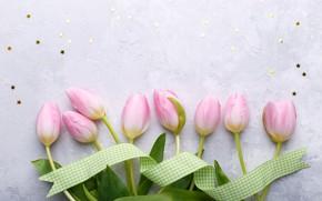 Картинка цветы, букет, лента, тюльпаны, розовые, fresh, pink, flowers, tulips, spring