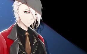 Картинка взгляд, парень, Fate / Grand Order, Судьба великая кампания