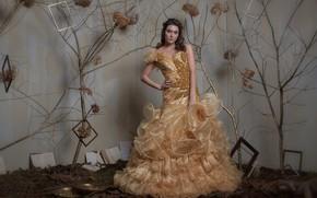 Картинка девушка, платье, студия