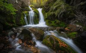 Картинка лес, река, камни, водопад, каскад, Argentina, Аргентина, Patagonia, Патагония, Los Glaciares National Park, Национальный парк …