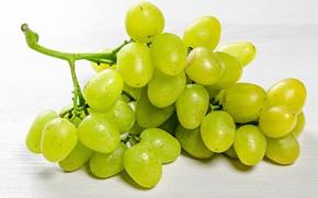 Картинка крупный план, виноград, гроздь