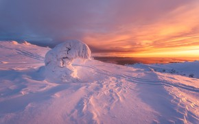 Картинка природа, дерево, рассвет, лыжня, ель, утро, Белое море, снега, Заполярье, Кандалакша, пейзаж зима, сопка Волосяная