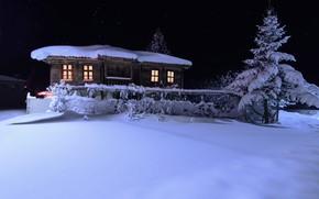 Картинка зима, небо, снег, ночь, дом, дерево, ель, звёзды