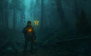 Картинка лес, ночь, парень, Death Stranding