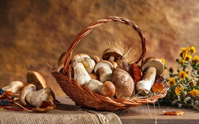 Картинка корзина, грибы, корзинка, Натюрморт