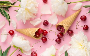 Картинка цветы, лепестки, white, белые, рожок, черешня, flowers, beautiful, пионы, cherry, berries, petals, peonies, tender