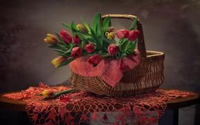 Картинка фон, корзина, тюльпаны, корзинка, салфетка