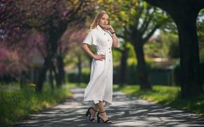 Картинка взгляд, девушка, парк, платье, в белом, боке