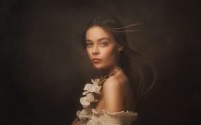 Картинка взгляд, девушка, цветы, лицо, темный фон, портрет, платье, орхидеи, плечи