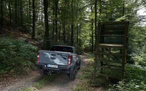 Картинка серый, Ford, Raptor, пикап, Ranger, в лесу, 2019