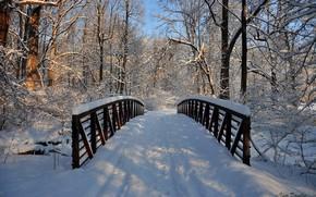 Картинка зима, снег, деревья, мост