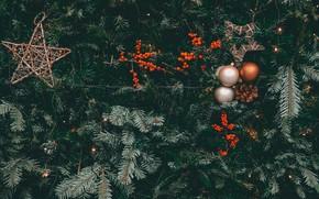 Картинка украшения, ягоды, праздник, шары, звёзды, Рождество, Новый год, ёлка, шишки