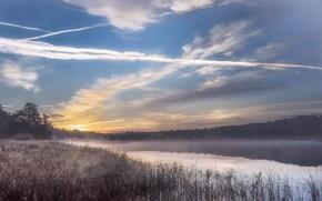 Картинка небо, облака, туман, озеро, берег, утро, водоем