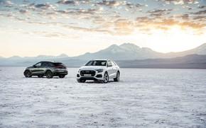 Картинка пара, Quattro, 2018, кроссовер, S-Line, 55 TFSI, Audi Q8