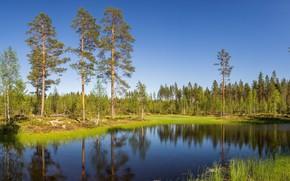 Картинка небо, деревья, озеро