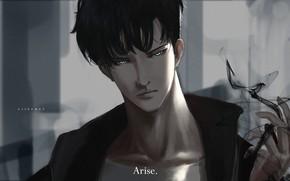 Картинка взгляд, демон, парень, Sung Jin-Woo, Solo Leveling, Поднятие уровня в одиночку