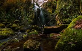 Картинка деревья, скала, камни, водопад, мох, Испания, Catalonia, El Sallent