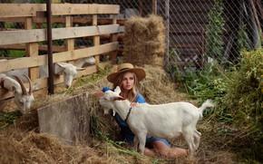 Картинка девушка, ножки, коза, Евгения Пятницкая, Полина Мишина