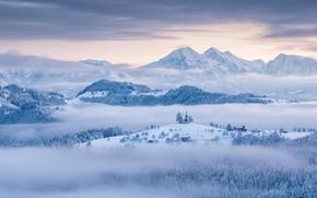 Картинка зима, снег, горы, Словения, церковь Святого Томаса