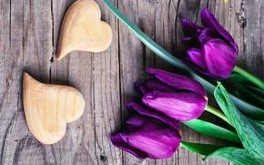 Картинка любовь, сердце, фиолетовые, тюльпаны, love, with, flowers, romantic, hearts, tulips, purple