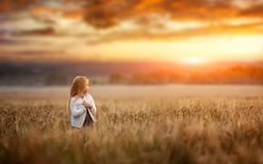 Картинка поле, закат, природа, ребенок, вечер, девочка, Renat Fotov