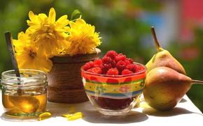 Картинка цветы, малина, мёд, груши